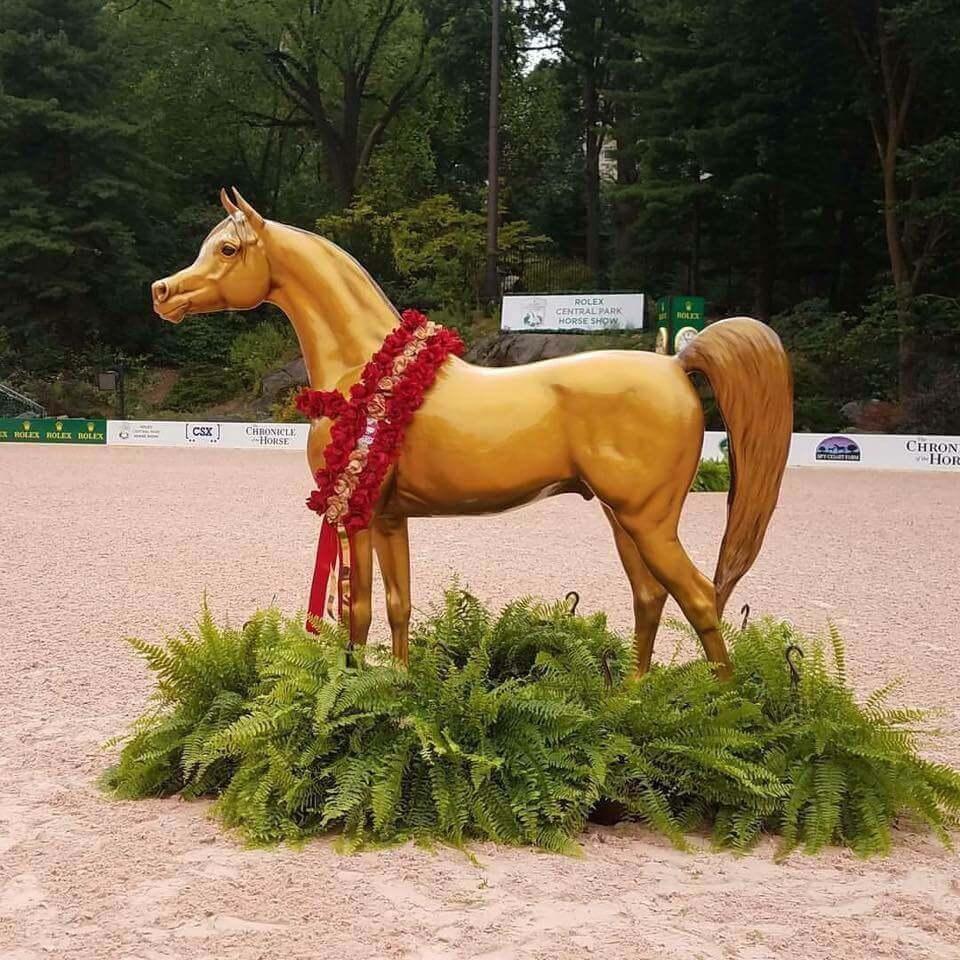 arabian-horses-for-humanity-we-love-03