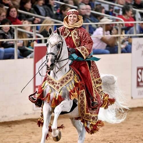 scottsdale-all-arabian-horse-show-we-love-horses-paul-kostial-3