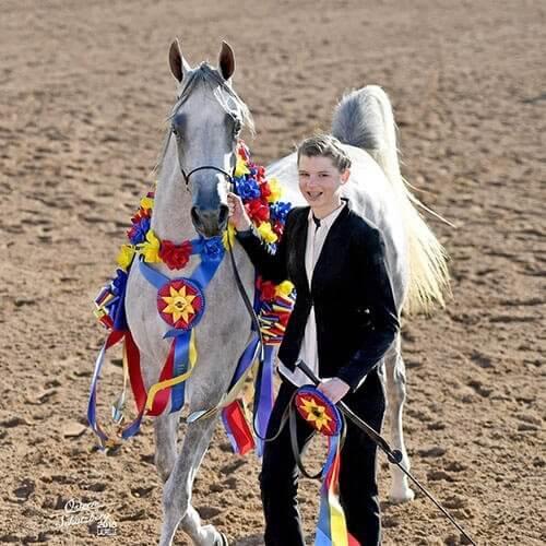 scottsdale-all-arabian-horse-show-we-love-horses-paul-kostial-4