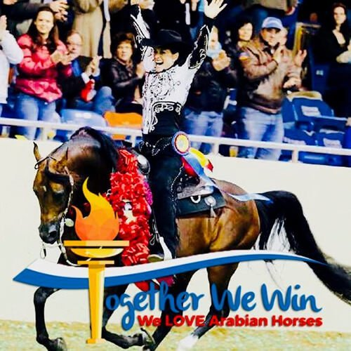 square-we.love.arabian.horses-13
