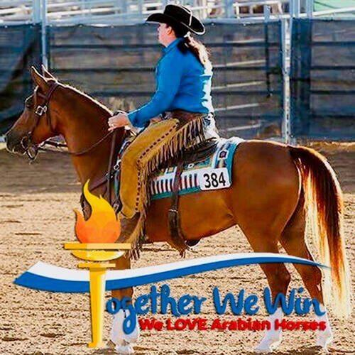 square-we.love.arabian.horses-18