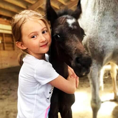 we.love.arabian.horses-blog-00005