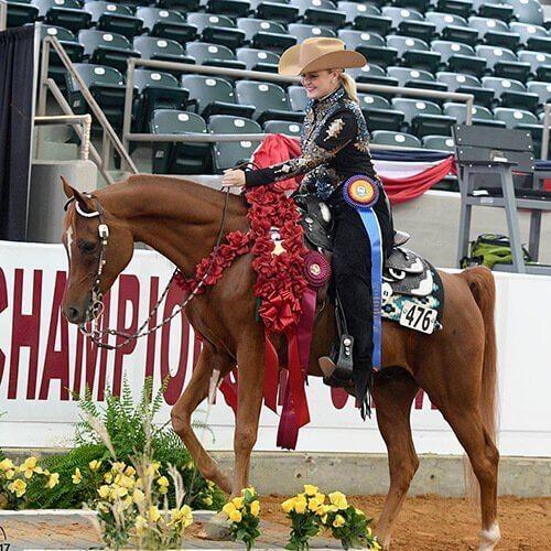 we.love.arabian.horses-blog-00024