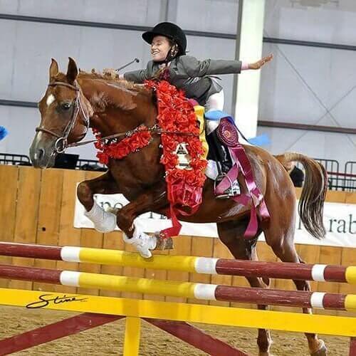 we.love.arabian.horses-blog-00029