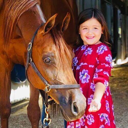 we.love.arabian.horses-blog-00110