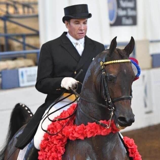 we.love.arabian.horses-blog-00162