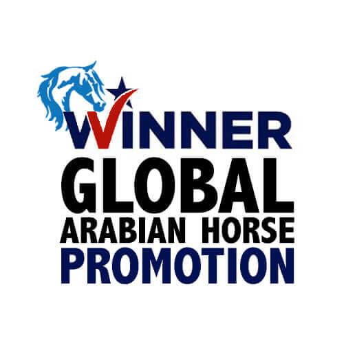 winner-global-arabian-horse-we-love-horses-paul-kostial