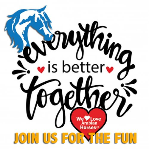 we-love-arabian-horses-join-us-for-the-fun