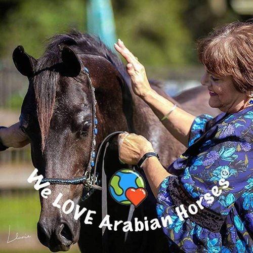 we-love-arabian-horses-people-24