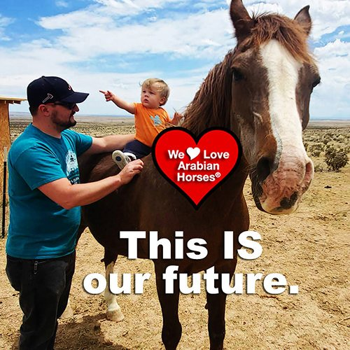 we-love-arabian-horses-this-is-our-future-008
