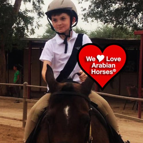 we-love-arabian-horses-this-is-our-future-010