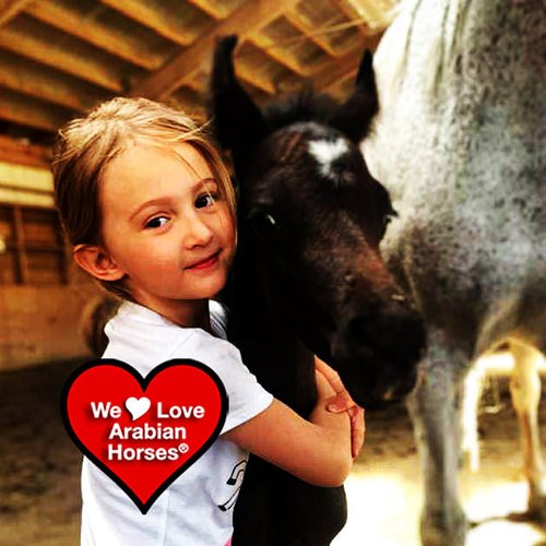 we-love-arabian-horses-this-is-our-future-014