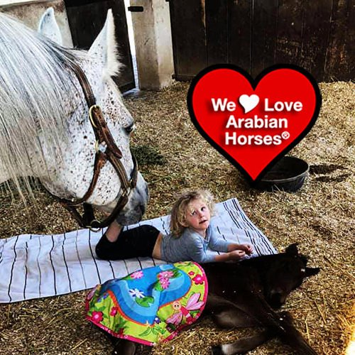 we-love-arabian-horses-this-is-our-future-015