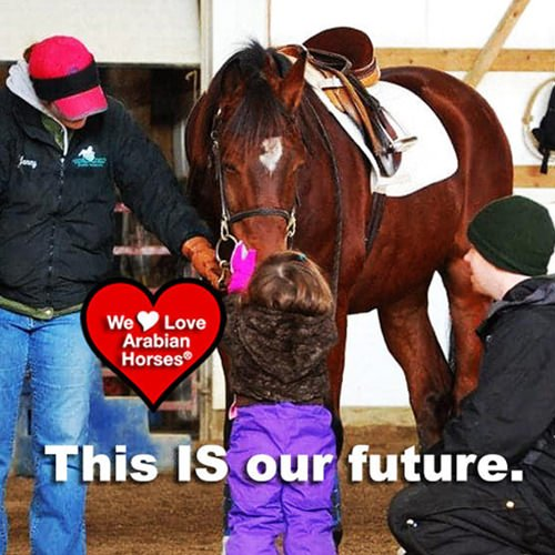 we-love-arabian-horses-this-is-our-future-020