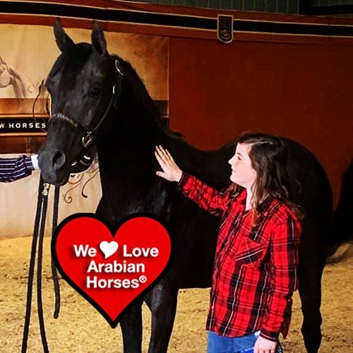 we-love-arabian-horses-this-is-our-future-021