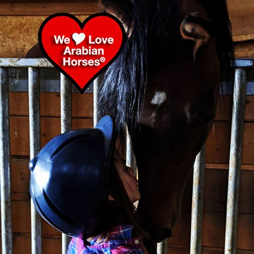 we-love-arabian-horses-this-is-our-future-030