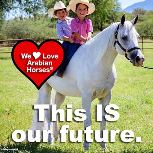 we-love-arabian-horses-this-is-our-future-031