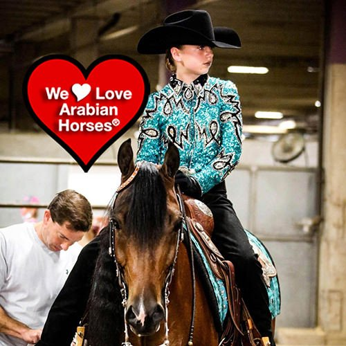 we-love-arabian-horses-this-is-our-future-038