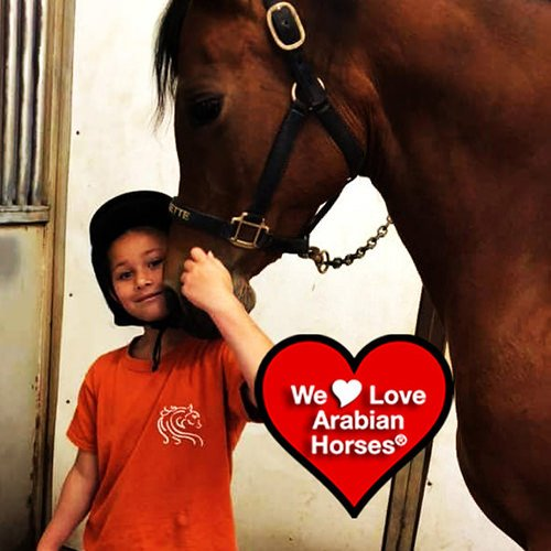 we-love-arabian-horses-this-is-our-future-043