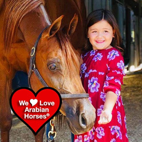 we-love-arabian-horses-this-is-our-future-049