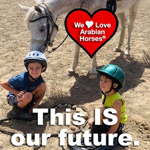 we-love-arabian-horses-this-is-our-future-052