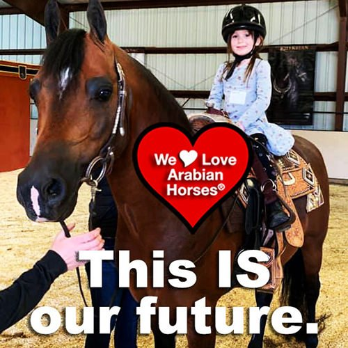 we-love-arabian-horses-this-is-our-future-053