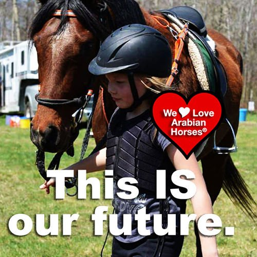 we-love-arabian-horses-this-is-our-future-055