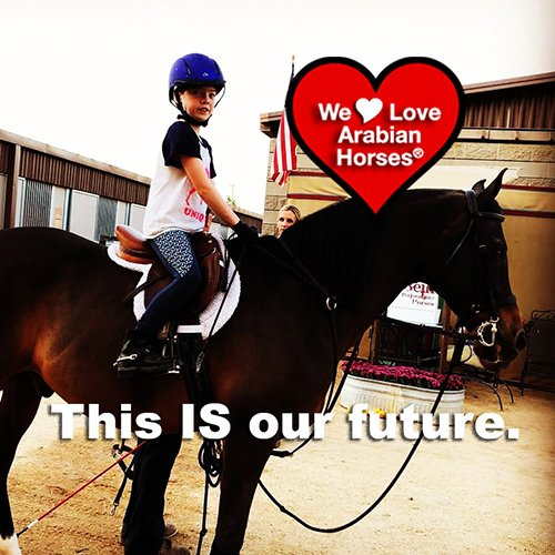 we-love-arabian-horses-this-is-our-future-061