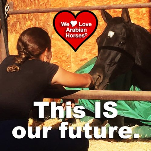 we-love-arabian-horses-this-is-our-future-062