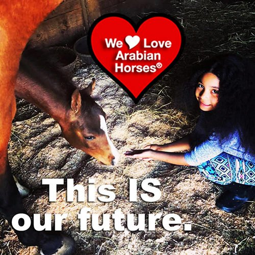 we-love-arabian-horses-this-is-our-future-067