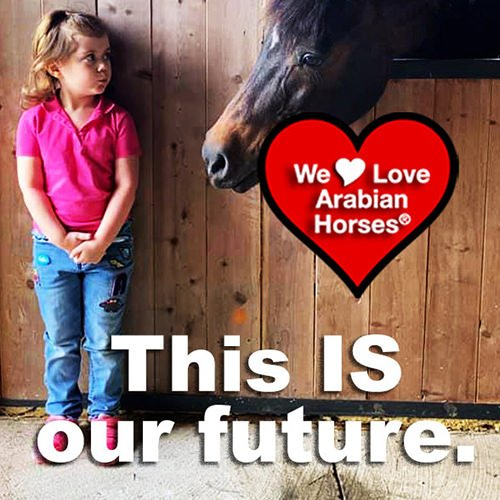 we-love-arabian-horses-this-is-our-future-070