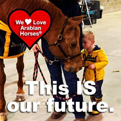 we-love-arabian-horses-this-is-our-future-073