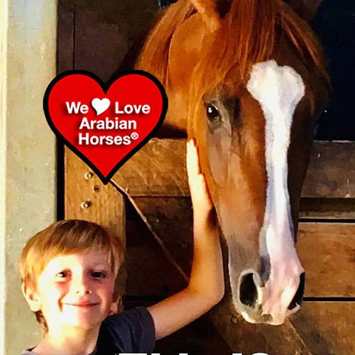 we-love-arabian-horses-this-is-our-future-080