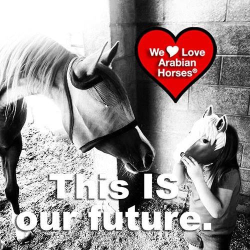 we-love-arabian-horses-this-is-our-future-088