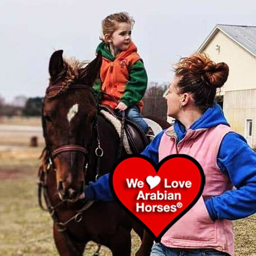 we-love-arabian-horses-this-is-our-future-089