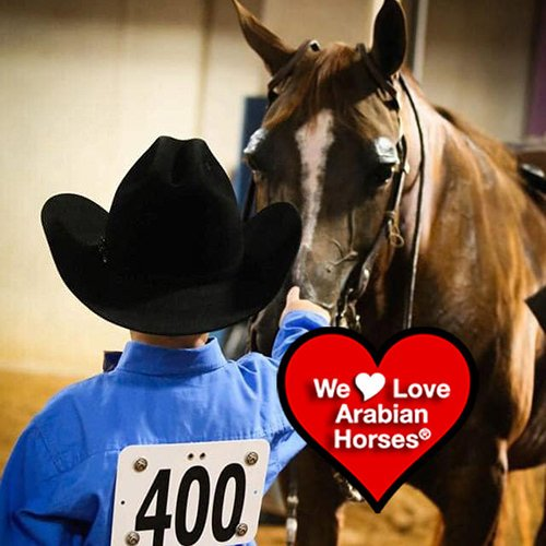 we-love-arabian-horses-this-is-our-future-097