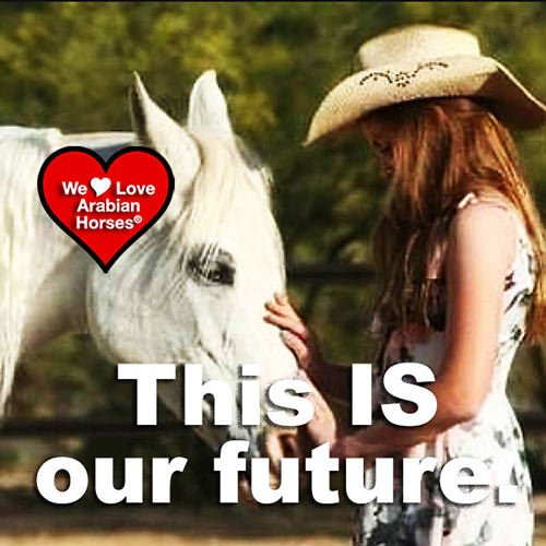 we-love-arabian-horses-this-is-our-future-099