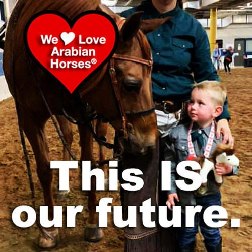 we-love-arabian-horses-this-is-our-future-116