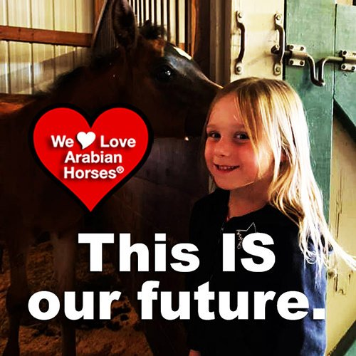 we-love-arabian-horses-this-is-our-future-117