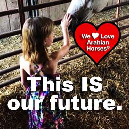 we-love-arabian-horses-this-is-our-future-120
