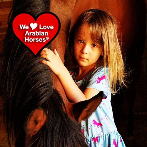 we-love-arabian-horses-this-is-our-future-121