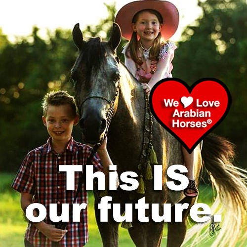 we-love-arabian-horses-this-is-our-future-124