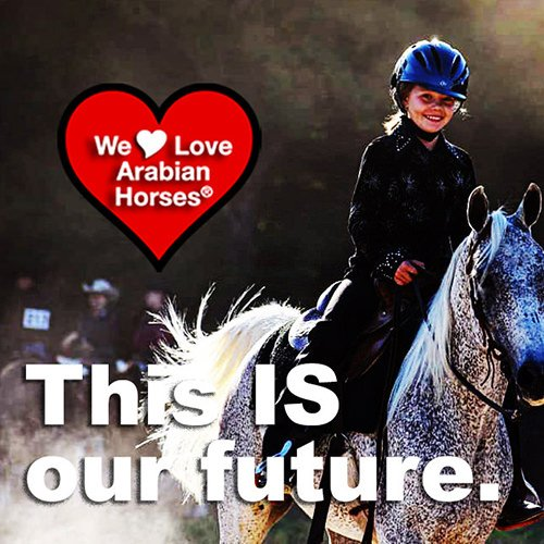 we-love-arabian-horses-this-is-our-future-127
