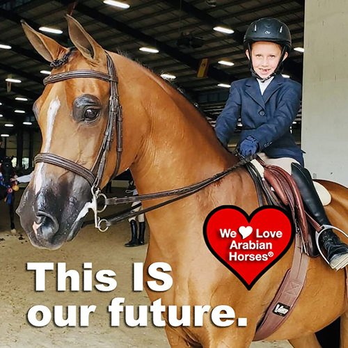 we-love-arabian-horses-this-is-our-future-146