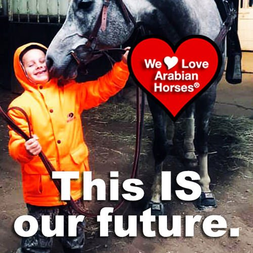 we-love-arabian-horses-this-is-our-future-151