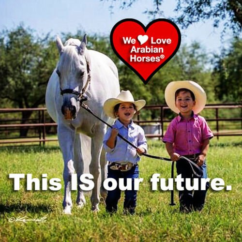 we-love-arabian-horses-this-is-our-future-152