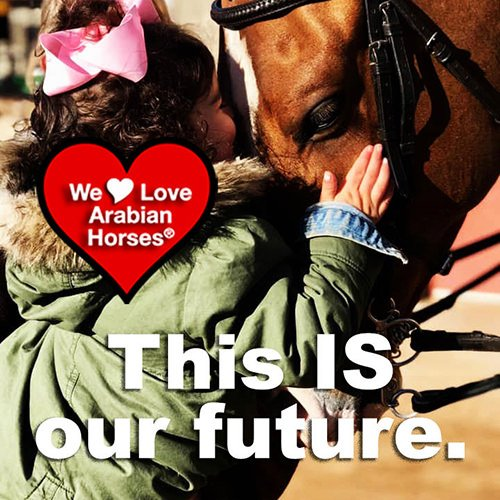we-love-arabian-horses-this-is-our-future-155