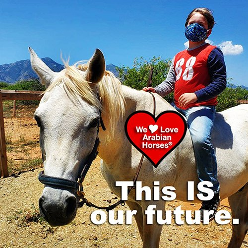 we-love-arabian-horses-this-is-our-future-156
