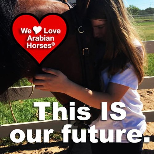 we-love-arabian-horses-this-is-our-future-158
