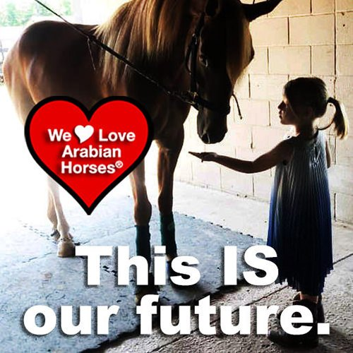 we-love-arabian-horses-this-is-our-future-160